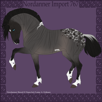 Nordanner Custom Import 767 by BaliroAdmin