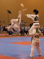 Taekwondo U.S. Open 7 by Kicks02