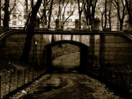 Troll Bridge of Central Park by dominamia