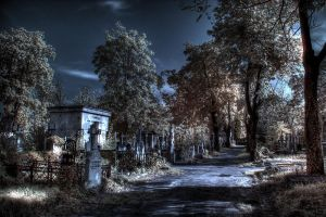 ir in the cemetery by lucifersdream