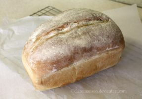 Loaf Of Bread by claremanson