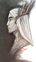 Thranduil by Bonequisha