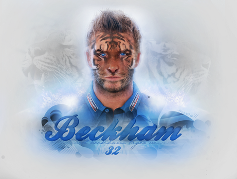 Tiger Beckham by marco11EXP