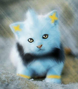 Play with the Shinx? by xxMeleexx