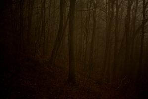 Silent hill-Twilight woods by thejamesstark