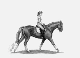 Dressage Horse by WoodstockLover8