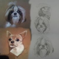 Dogs by smilie5768