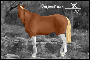Import 10 by Orstrix