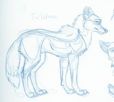 Tailchaser 9000th concept by Tailchaser-Bria