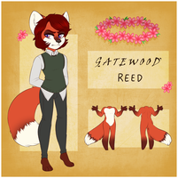 Reed by fawnjpeg