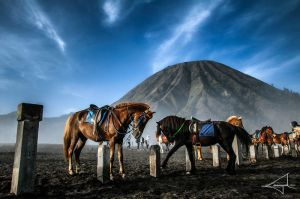 The Desert of Volcanic Ashes II by Usayed