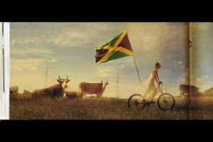 Jamaica by lovigin