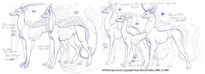 ShiRah_SpeciesSheet by moonfeather