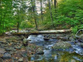 Ricketts Glen State Park 17 by Dracoart-Stock