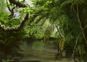 Forest swamp by felixclement