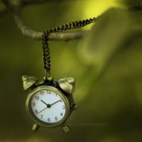Little time left ... by aoao2