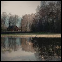 reflection by Amalus