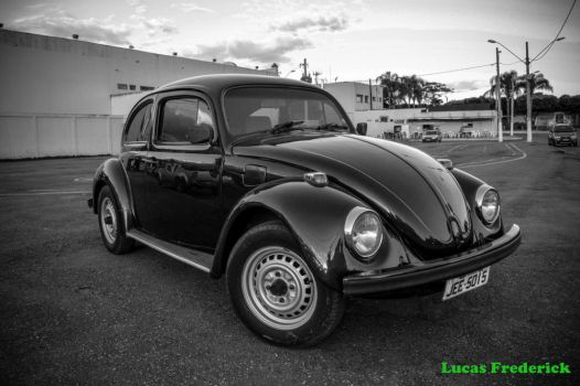 Black Beetle by lucasfrederick