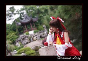 Touhou Project, pic 5 by Heavens-Leaf