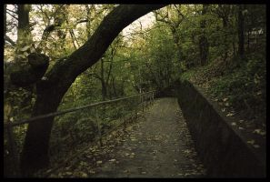 The path of forgotten steps by remousse