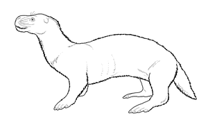 Otter Seal by WSnyder