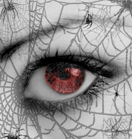 Web of Lies by Vampy-note