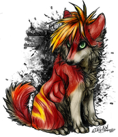 .:Storm:. by WhiteSpiritWolf