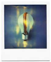 the light inside by buhoazul