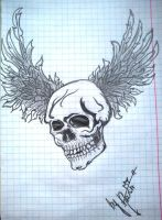 The skull by LiltingLilly