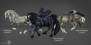 3 old horses by Minarie