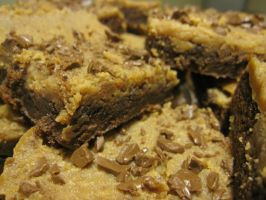 Milk Chocolate and PB Brownies by maytel