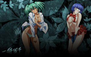 Ikki Tousen wallpaper by semirahge