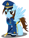 Colonel Walther Ceremonial Uniform by WaltherP38ita