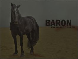 The Bloody Baron by garagebutterfly