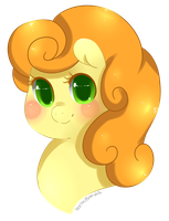 Carrot Top/Golden Harvest Bust by Xeella