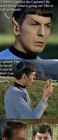 VERY Funny STAR TREK Parody by Princess-Kraehe