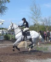 Ballygraffan Horse Trials: 3. by Courtiepona