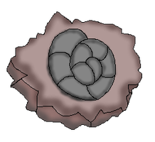 Spiral fossil (CoC Fossil) by Dianamond