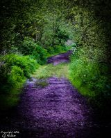 Westbere Path by AstarothSquirrel
