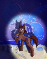 Nocturnality by SEAWOLF815