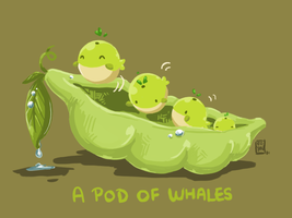 Pod of Whales by SkyWhistle
