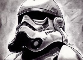 Stormtrooper by LightvsRight