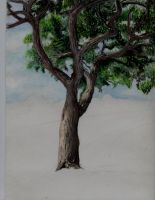 water colour tree by Redaer636XT