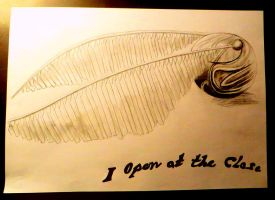 the golden snitch by HeineD