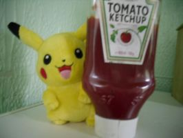 I finded the ketchups! by ConkerTSquirrel