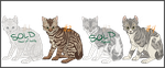 [OPEN] Kitten Auction : Litter 007 by lameboat