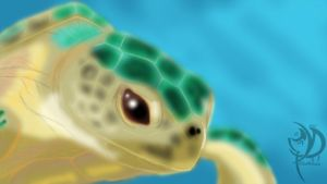 Turtle by Khatharsis