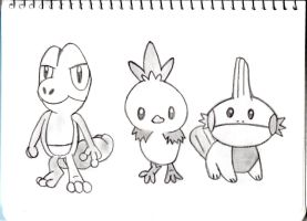 Choose your starter! Treecko, Torchic or Mudkip! by Necrophilliacness