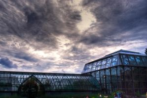 Conservatory III by NullCoding