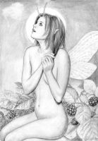 Fairy by dashinvaine